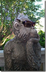cool-monkey-thinker